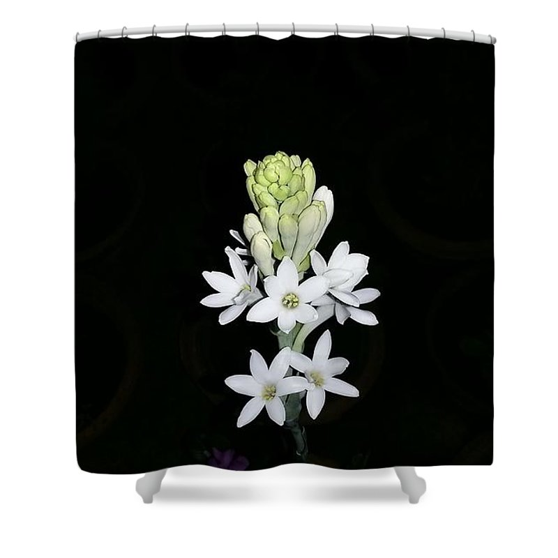 Shower Curtain featuring the photograph Indian Lily by Manjeet Sabharwal