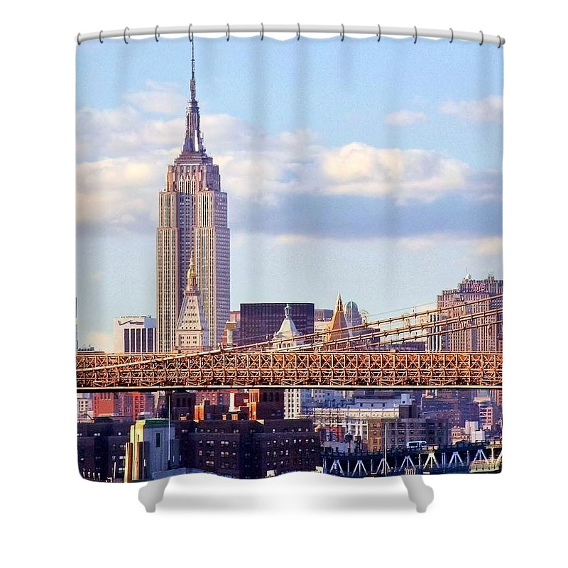 Empire State Building Shower Curtain featuring the photograph Inhabited Sculpture by Mitch Cat