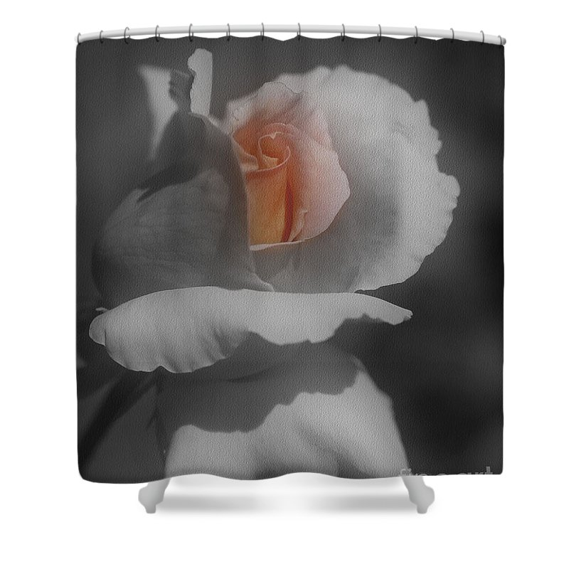 Rose Shower Curtain featuring the photograph Inner Beauty by Smilin Eyes Treasures