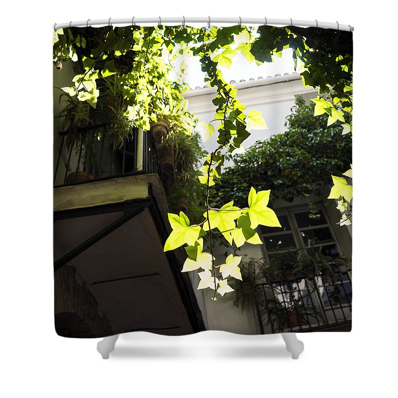 Barrio Carmen Shower Curtain featuring the photograph Inner Courtyard In El Carmen Valencia by For Ninety One Days