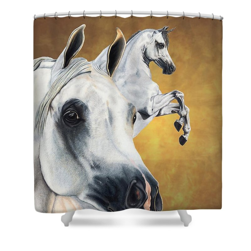 Horse Shower Curtain featuring the drawing Inspiration by Kristen Wesch