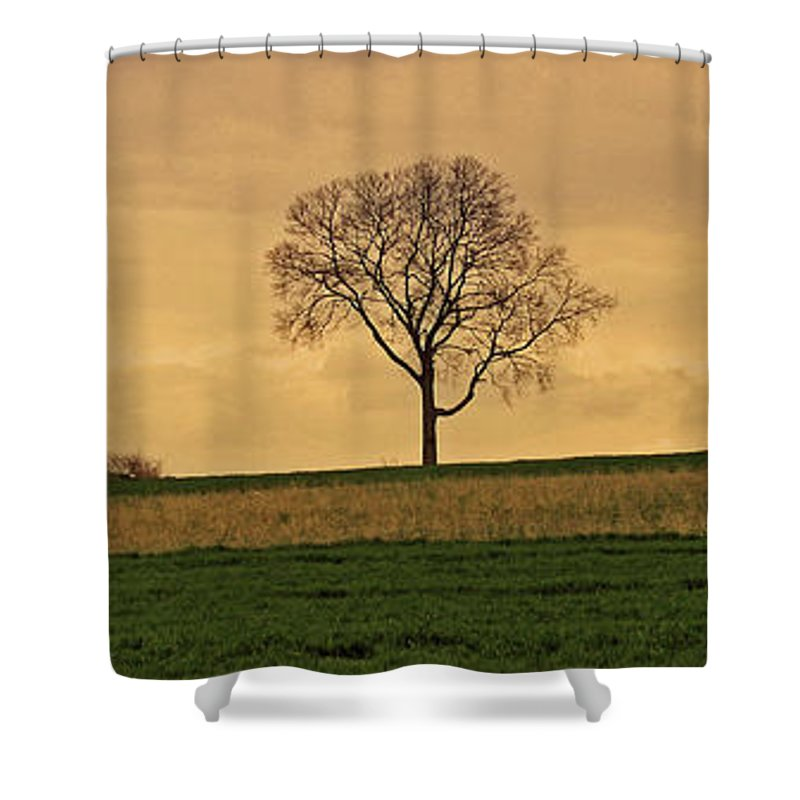 Lone Tree Shower Curtain featuring the photograph Inspiration by Scott Mahon