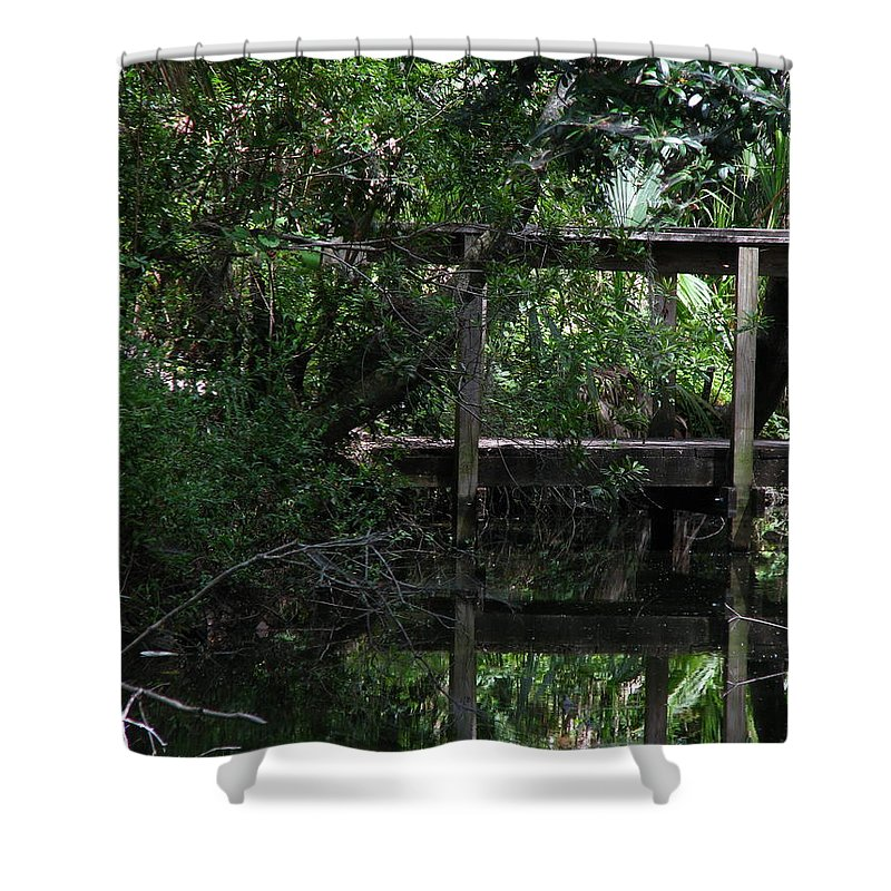 Woods Shower Curtain featuring the photograph Into Green by Greg Patzer
