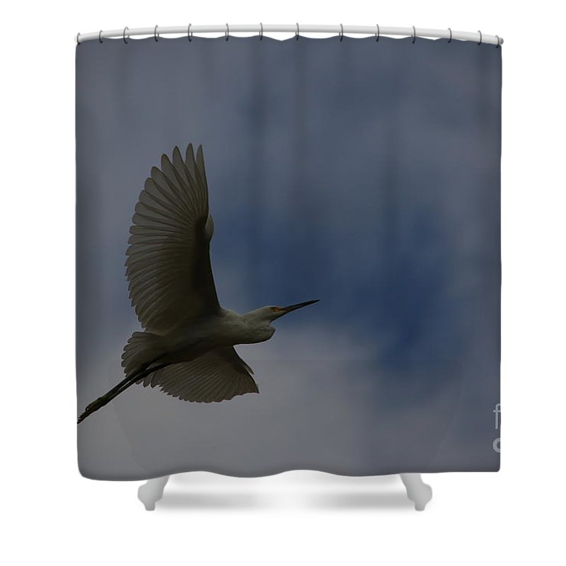 Snowy Shower Curtain featuring the photograph Into The Evening by Craig Corwin