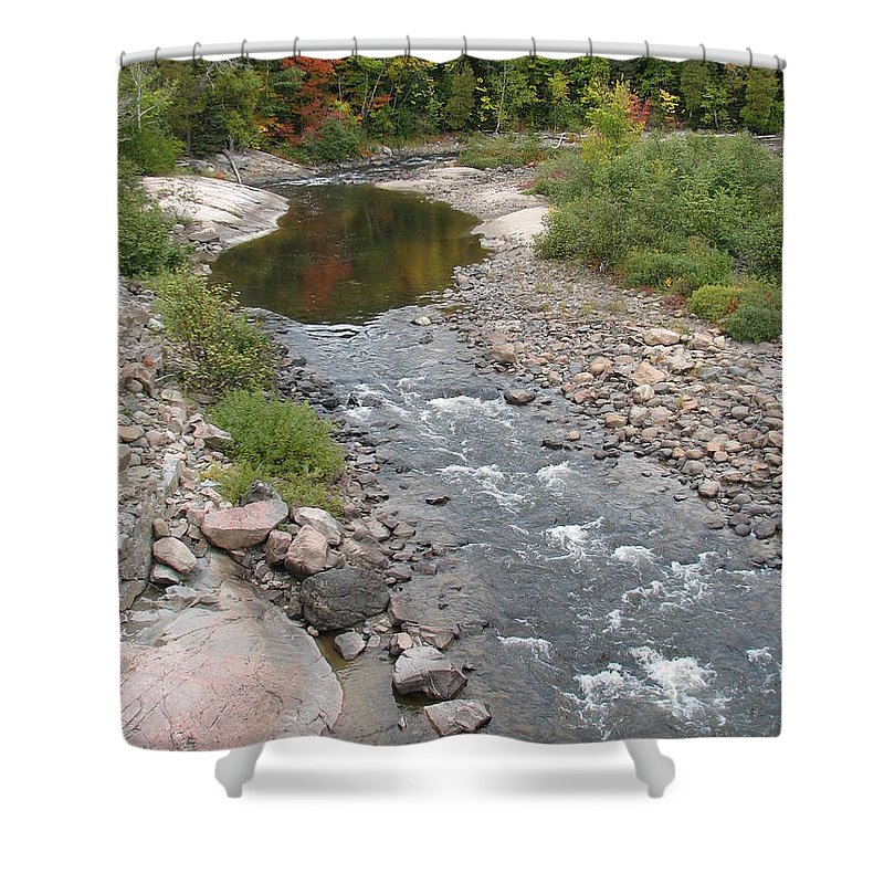 Water Shower Curtain featuring the photograph Into The Woods by Kelly Mezzapelle