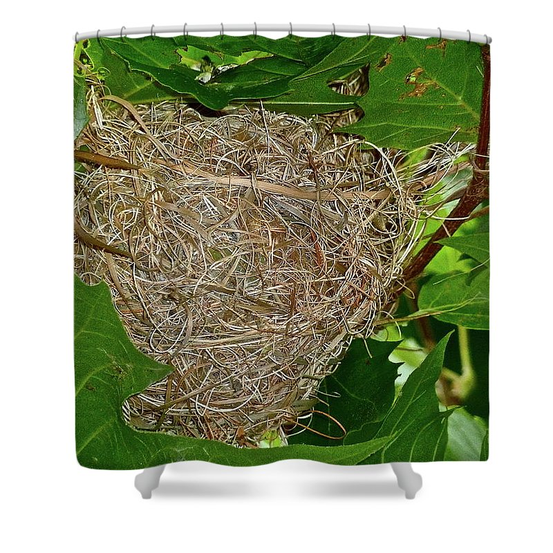 Birds Shower Curtain featuring the photograph Intricate Nest by Diana Hatcher
