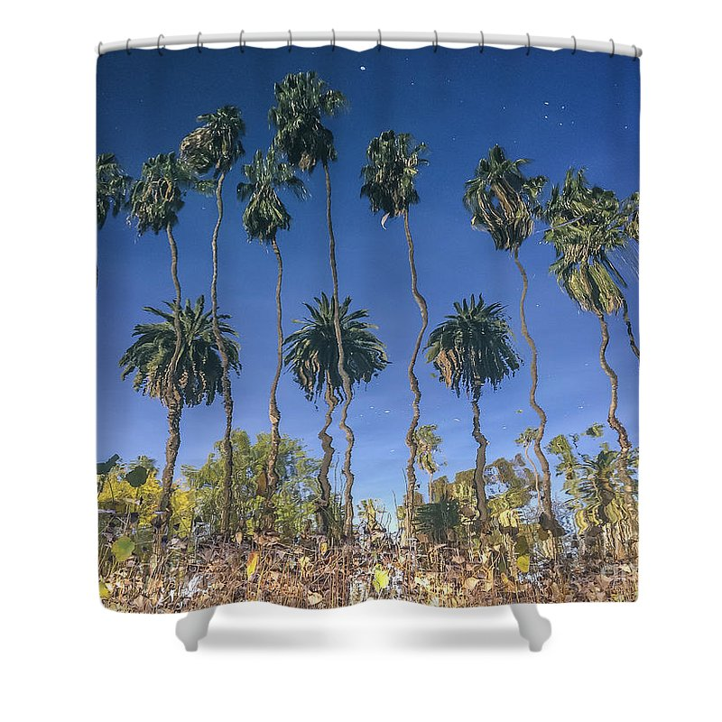 Background Shower Curtain Featuring The Photograph Inverse Palm Tree  Reflection At Echo Park Lake. By