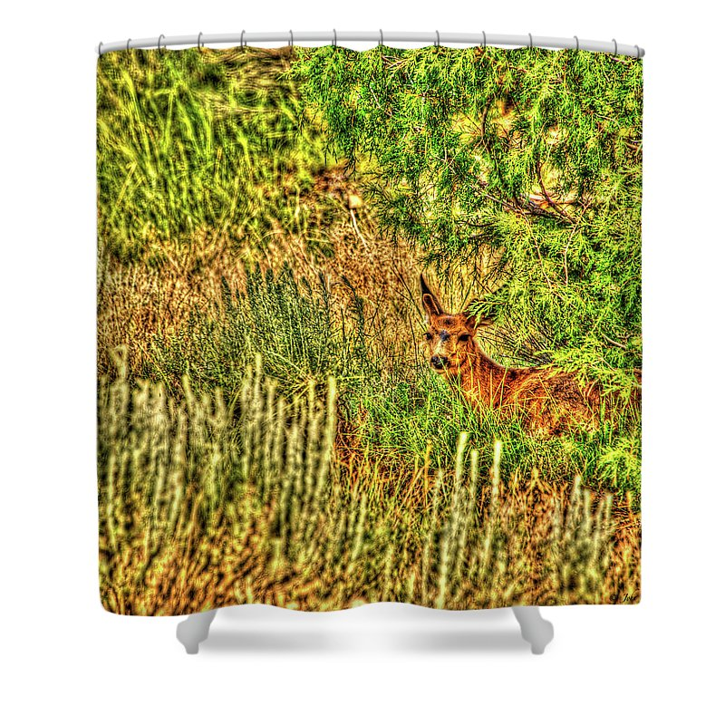 Nature Shower Curtain featuring the photograph Invisible Nature One Surreal C by John Burnie