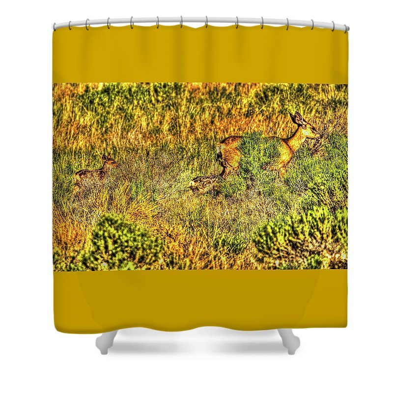 Nature Shower Curtain featuring the photograph Invisible Nature Three Surreal C by John Burnie