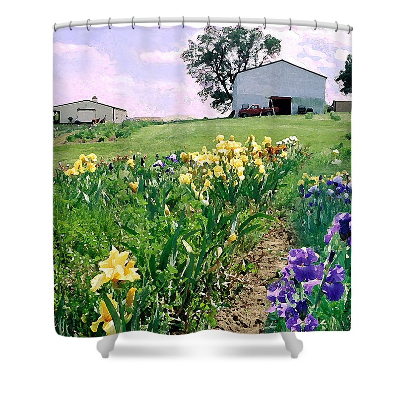 Landscape Painting Shower Curtain featuring the photograph Iris Farm by Steve Karol