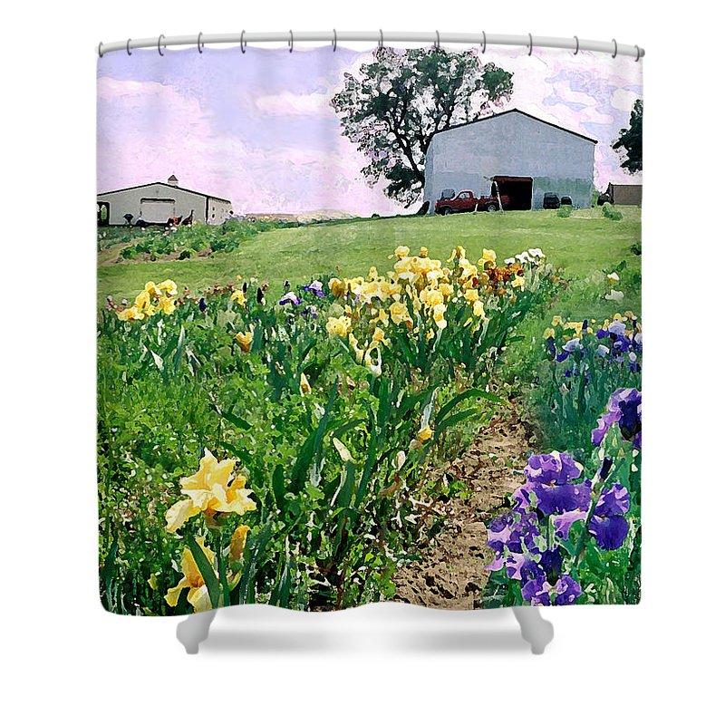 Landscape Painting Shower Curtain featuring the photograph Iris Farm by Steve Karol