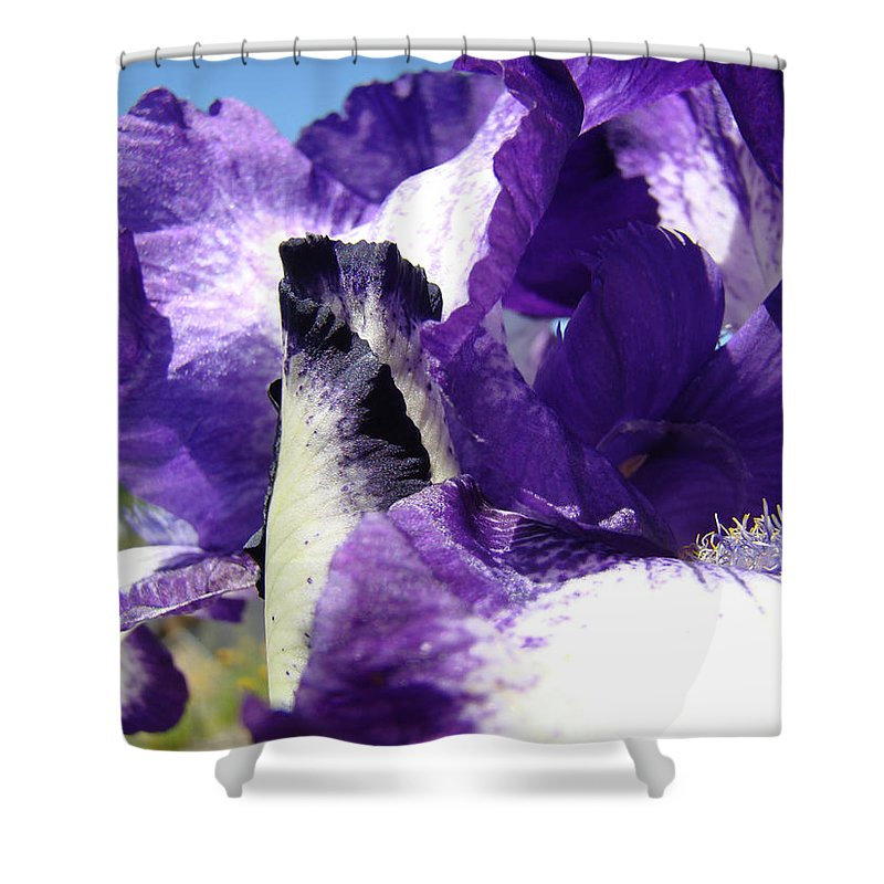 �irises Artwork� Shower Curtain featuring the photograph Iris Flower Art Print Purple Irises Botanical Floral Artwork by Baslee Troutman