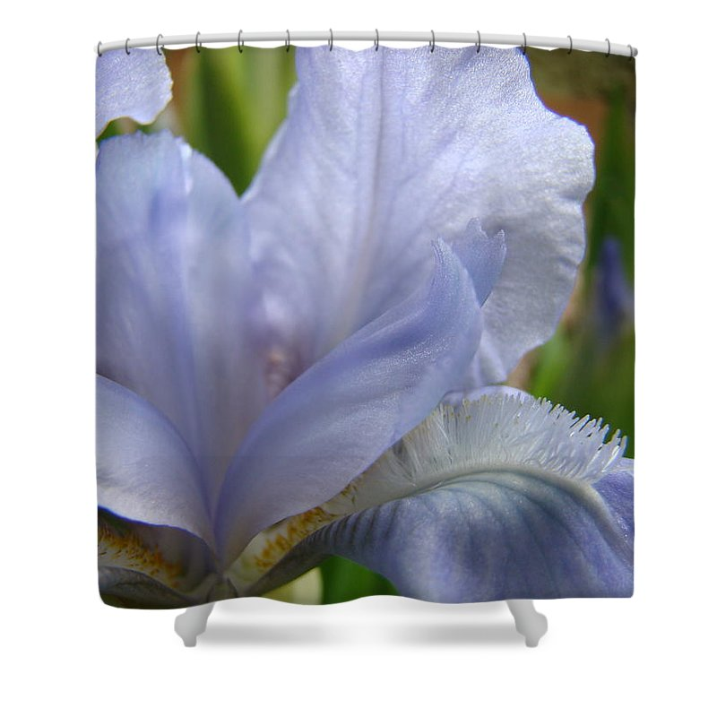 �irises Artwork� Shower Curtain featuring the photograph Iris Flower Blue 2 Irises Botanical Garden Art Prints Baslee Troutman by Baslee Troutman