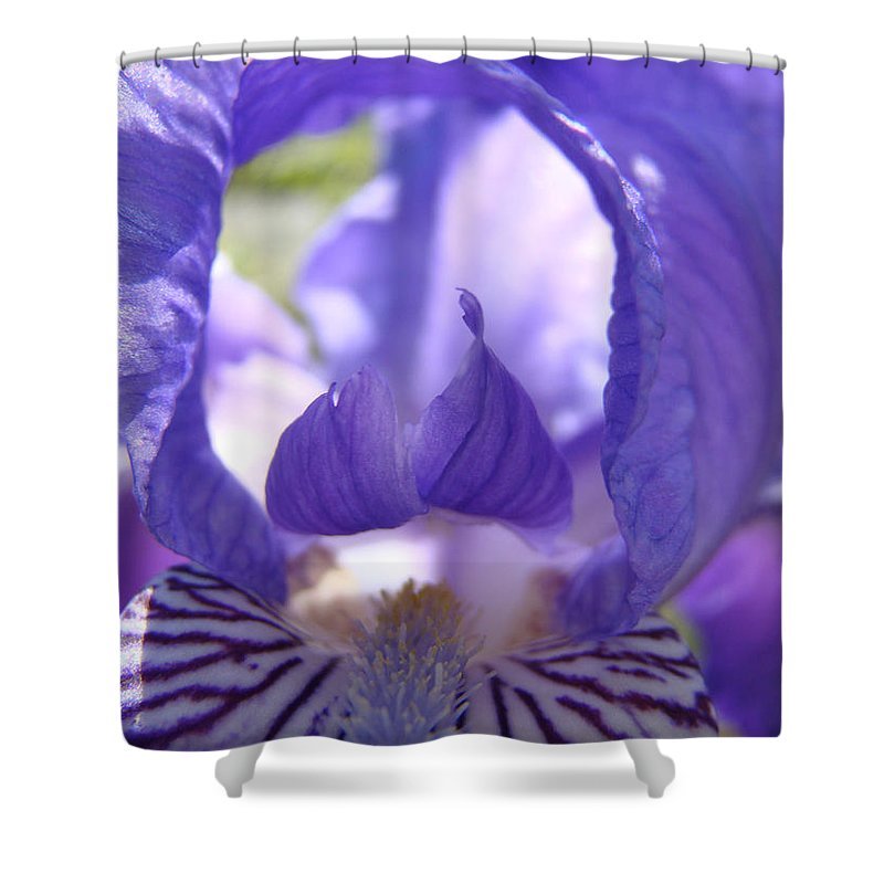 �irises Artwork� Shower Curtain featuring the photograph Iris Flower Purple Irises Floral Botanical Art Prints Macro Close Up by Baslee Troutman