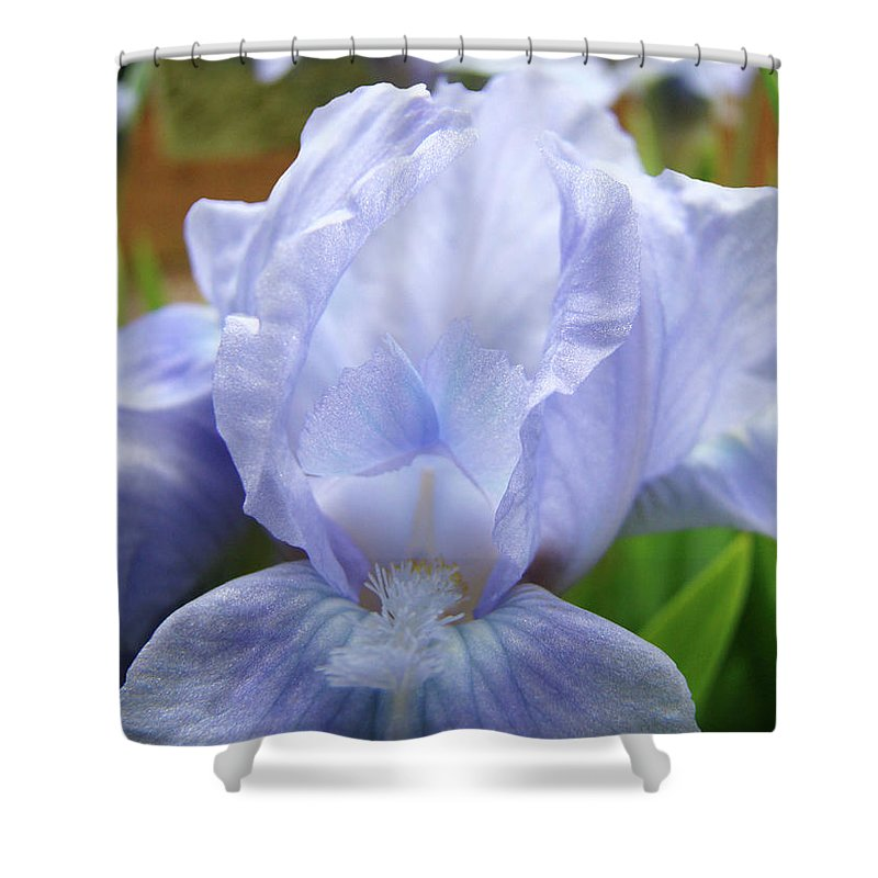 �irises Artwork� Shower Curtain featuring the photograph Irises Blue Iris Flower Light Blue Art Flower Soft Baby Blue Baslee Troutman by Baslee Troutman