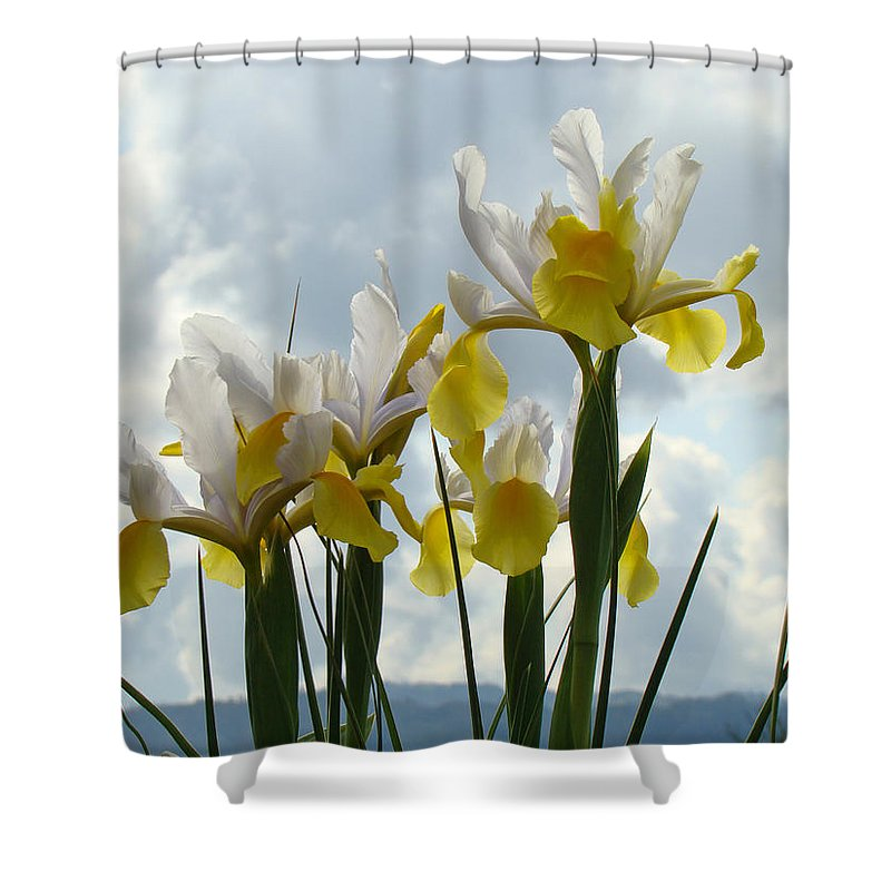 �irises Artwork� Shower Curtain featuring the photograph Irises Yellow White Iris Flowers Storm Clouds Sky Art Prints Baslee Troutman by Baslee Troutman