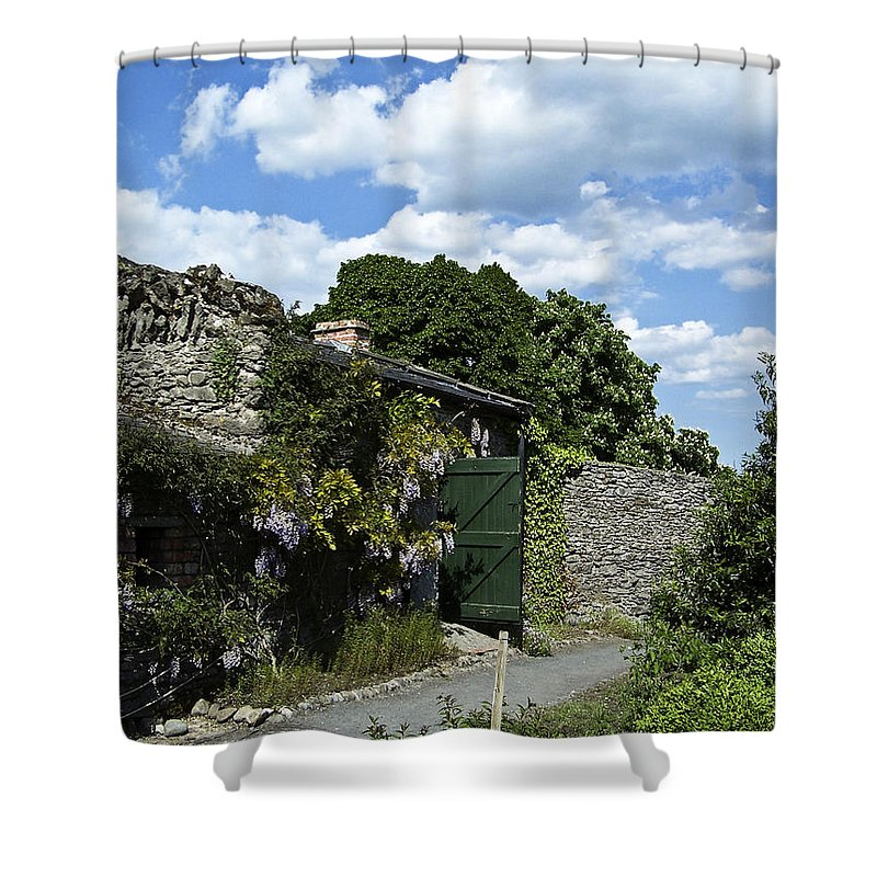 Irish Shower Curtain featuring the photograph Irish Garden County Clare by Teresa Mucha