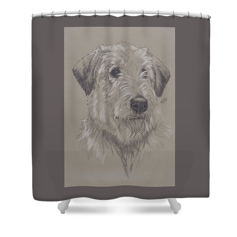 Purebred Shower Curtain featuring the drawing Irish Wolfhound by Barbara Keith