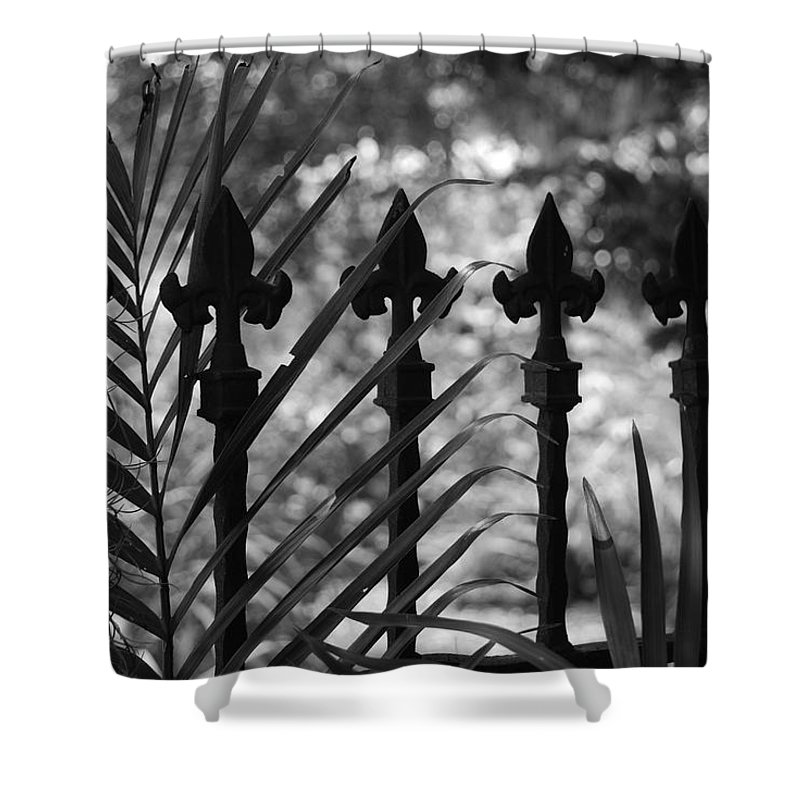 Wrought Iron Shower Curtain featuring the photograph Iron Fence by Rob Hans