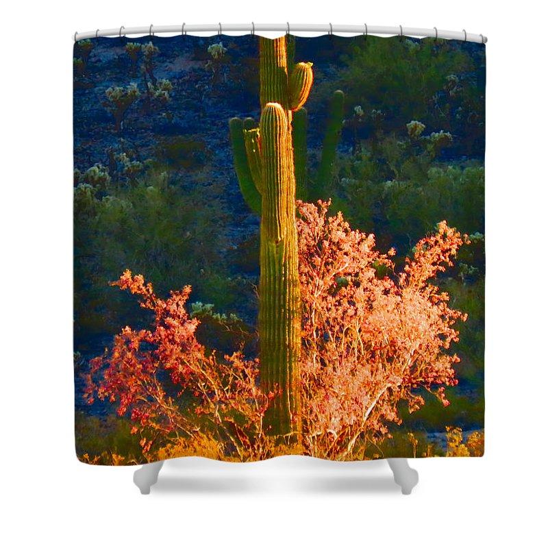 Arizona Shower Curtain featuring the photograph Ironwood Saguaro Dance - Bold by Judy Kennedy