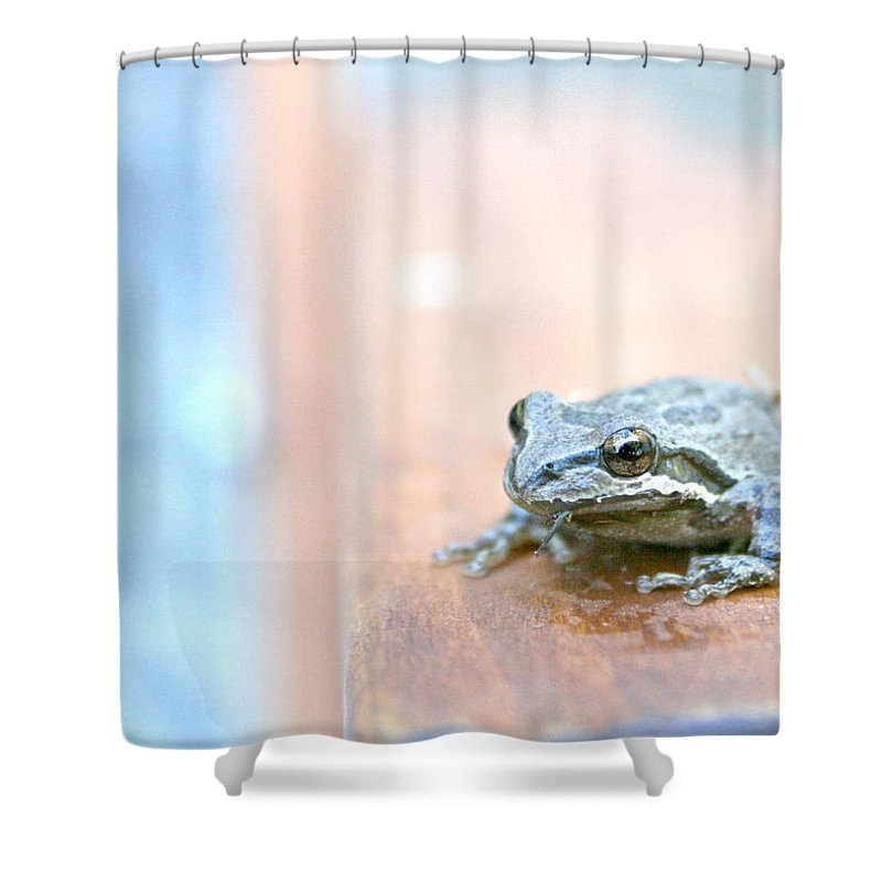 Frog Shower Curtain featuring the photograph It's A Good Day To Be A Frog by Sally Bauer