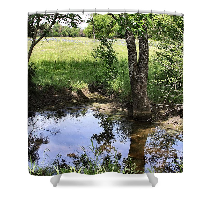 Photo Shower Curtain featuring the photograph It's A Guy Thing by Maris Salmins