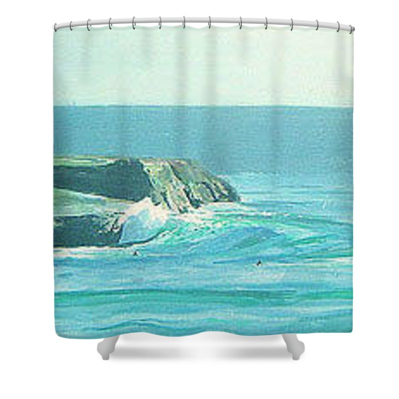 Its Beach Shower Curtain featuring the painting Its Beach by Peter Forbes