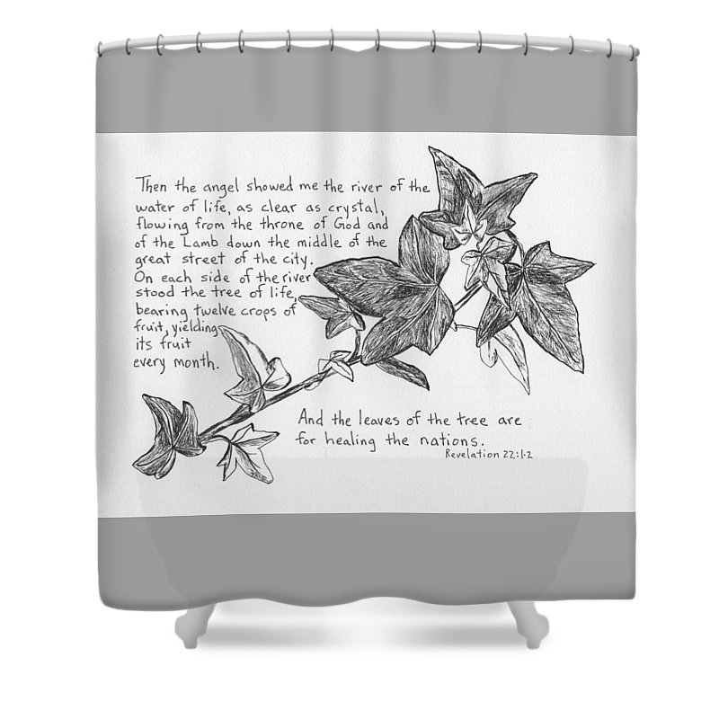 Ivy Shower Curtain Featuring The Drawing Branch By Theresa Dansin