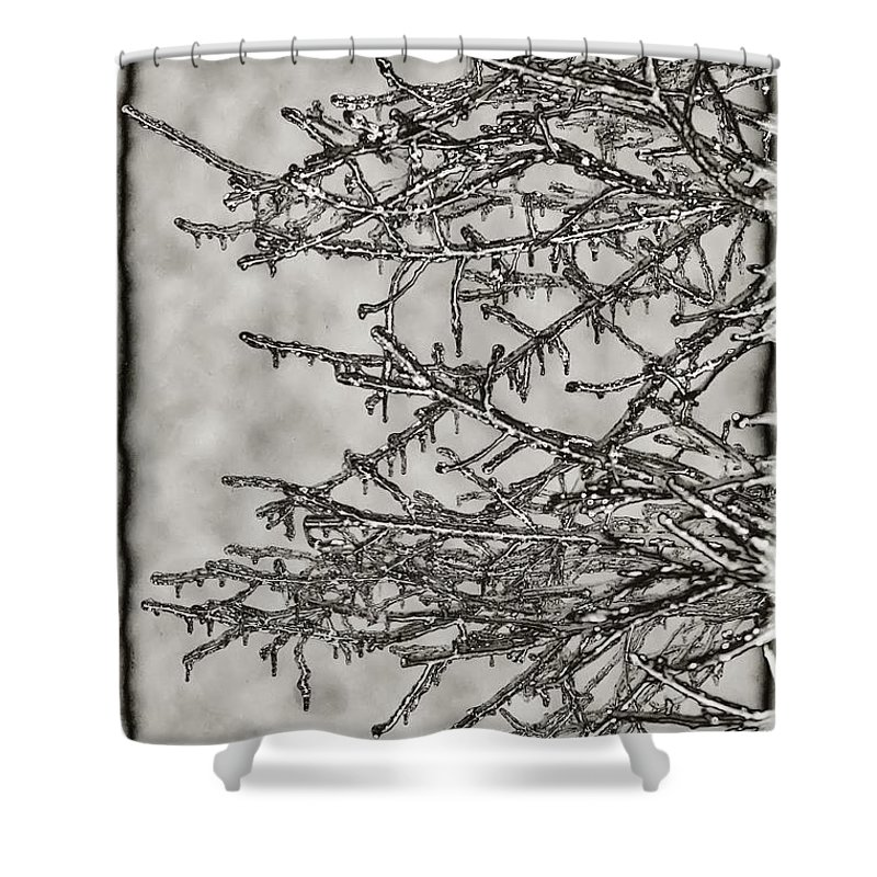 Ice Shower Curtain featuring the photograph Jack Frost by Bill Cannon