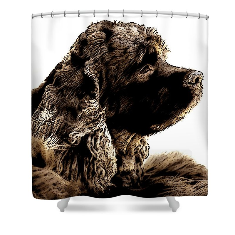 Animals Shower Curtain featuring the photograph Jack Waits by Norman Andrus