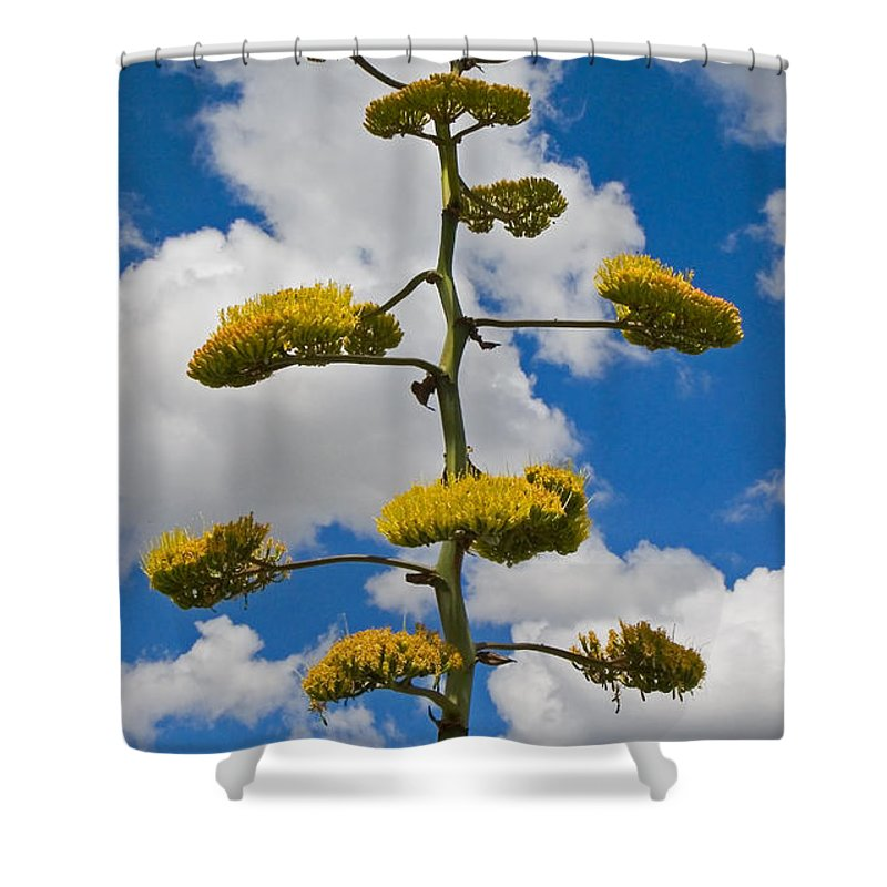 Blue Shower Curtain featuring the photograph Jacobs Ladder by Skip Hunt