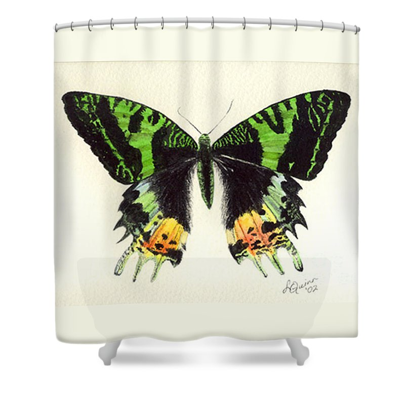 Butterfly Shower Curtain featuring the painting Jamaican Jewel by Lynn Quinn
