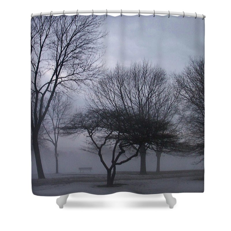 January Shower Curtain featuring the photograph January Fog 6 by Anita Burgermeister