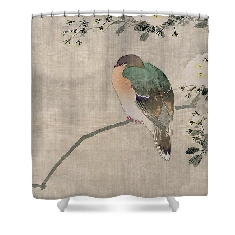 Japan Shower Curtain Featuring The Painting Japanese Silk Of A Wood Pigeon By School