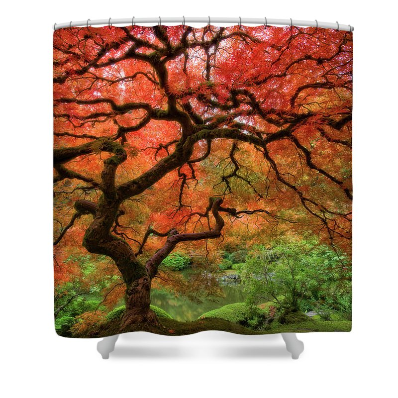 Horizontal Shower Curtain featuring the photograph Japenese Garden, Portland by Jesse Estes