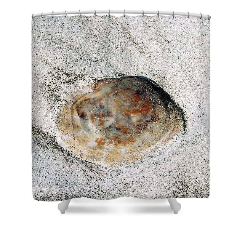 Jellyfish Shower Curtain featuring the photograph Jellyfish by Gary Wonning