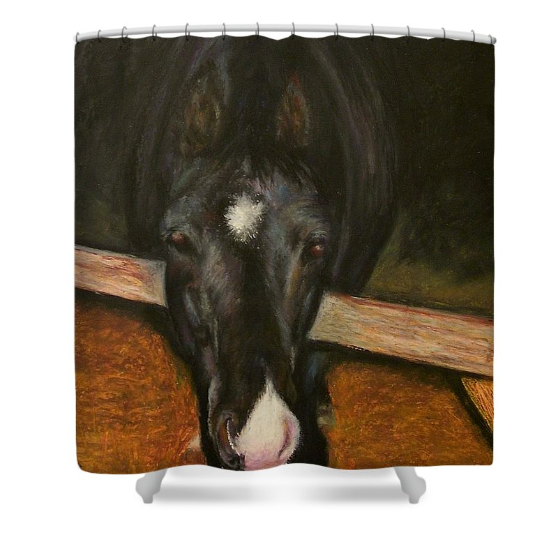 Horse Shower Curtain featuring the painting Jesse by Frances Marino