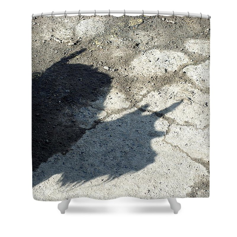 Scotty Shower Curtain featuring the photograph Jiggy - Scotty Dog by D'Arcy Evans