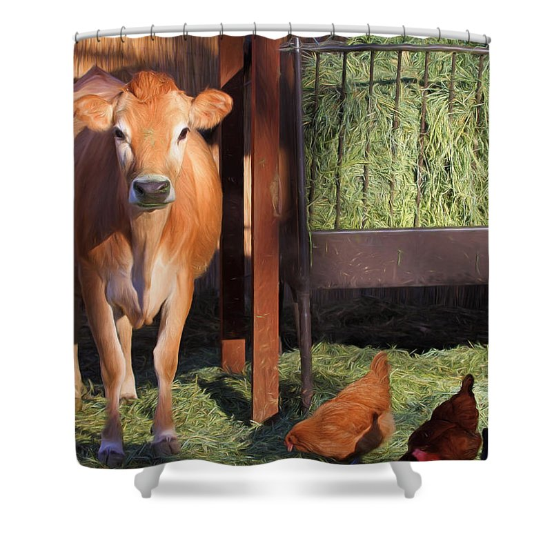Guernsey Shower Curtain featuring the photograph Joan And Company by Donna Kennedy