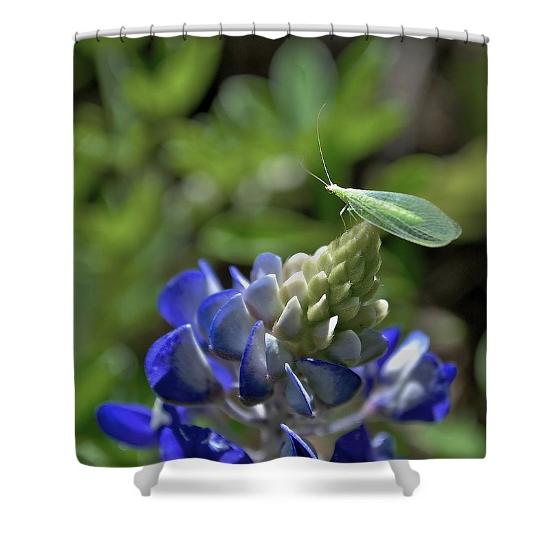 Bluebonnets Shower Curtain featuring the photograph Jolly Green Giant by Donna Shahan