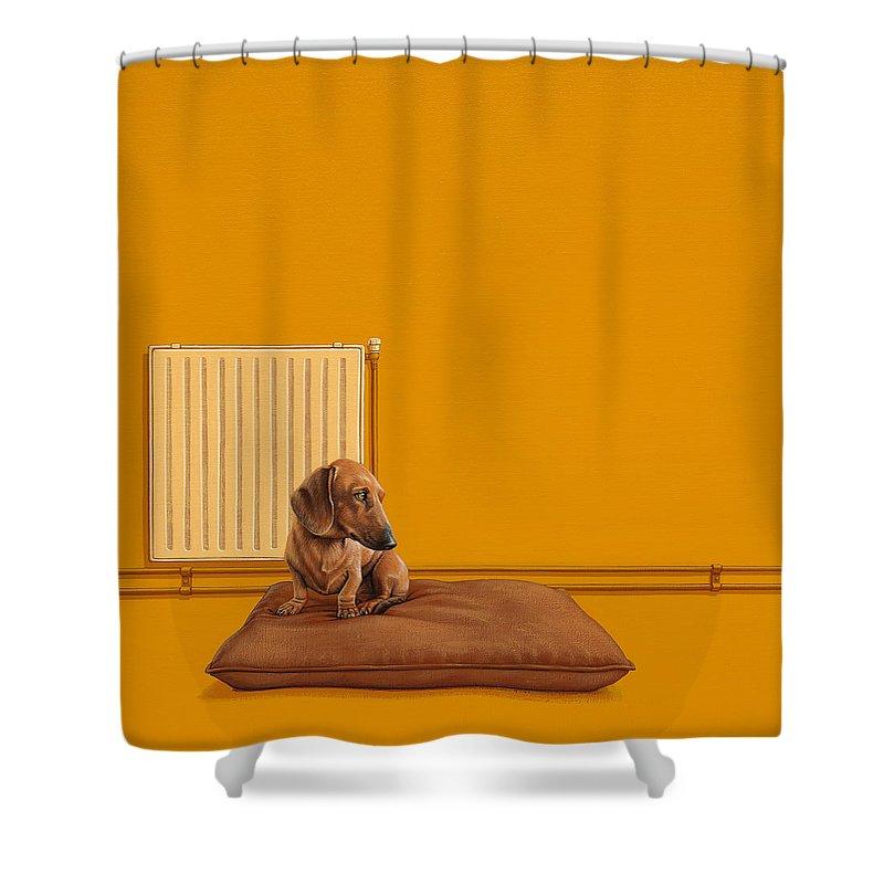 Dachshund Shower Curtains