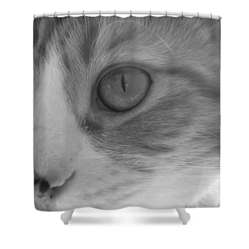 Calico Shower Curtain featuring the photograph Jordi Girl by Bridgette Gomes