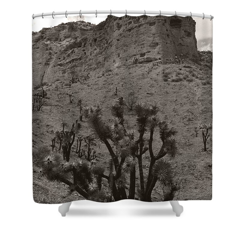 Shower Curtain featuring the photograph Joshua Hillside by Heather Kirk