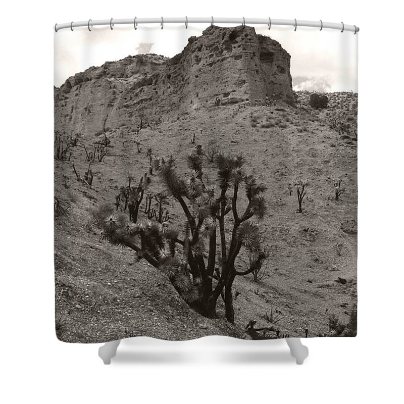 Shower Curtain featuring the photograph Joshua Hillside Number Two by Heather Kirk