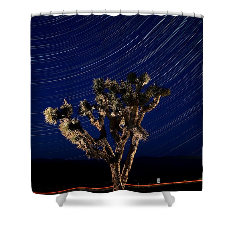 Death Shower Curtain featuring the photograph Joshua Tree And Star Trails by Steve Gadomski