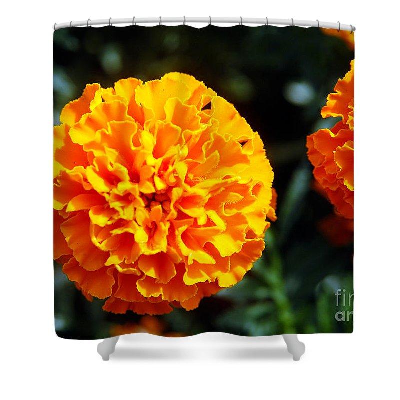 Clay Shower Curtain featuring the photograph Joyful Orange Floral Lace by Clayton Bruster