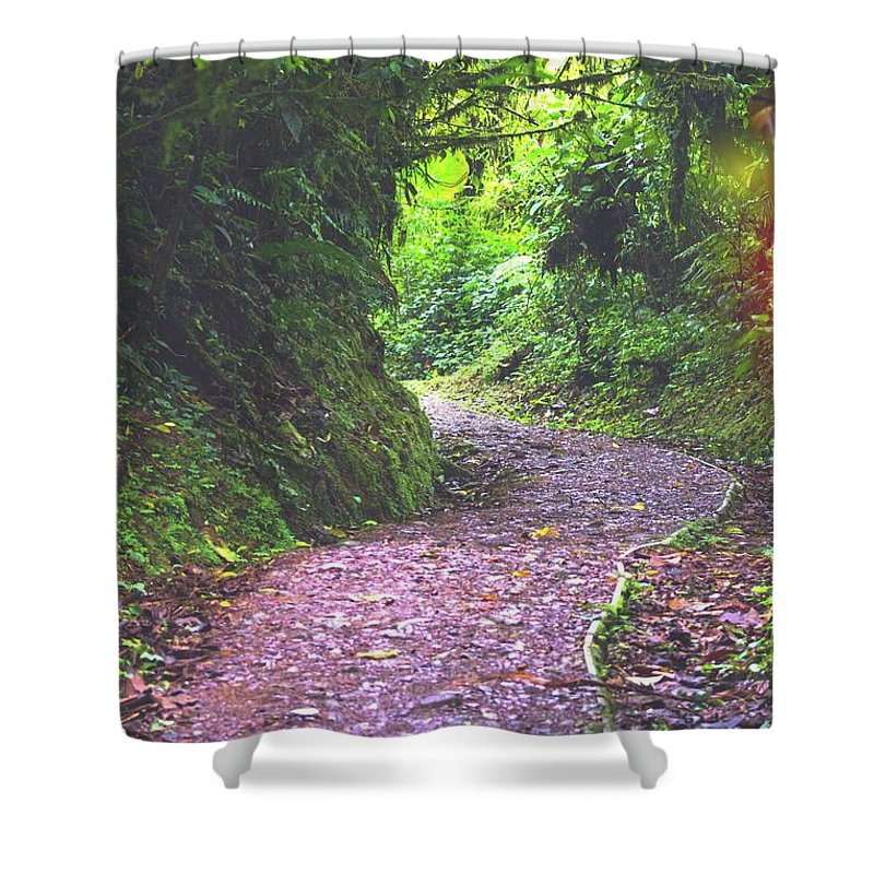 Monteverde Shower Curtain featuring the photograph Jungle Trail by Charles Wollertz