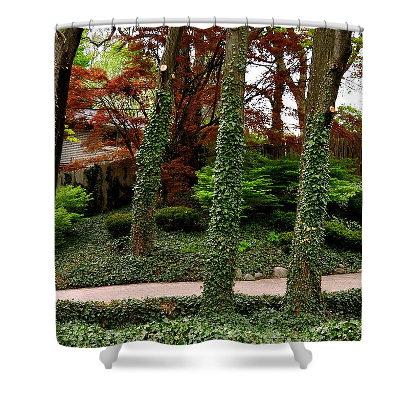 Trees Shower Curtain featuring the photograph Junk On The Trunks by Chris Fleming
