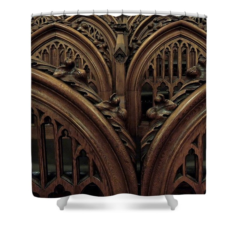 Gothic Shower Curtain featuring the photograph Justice By Consensus by Vincent Green
