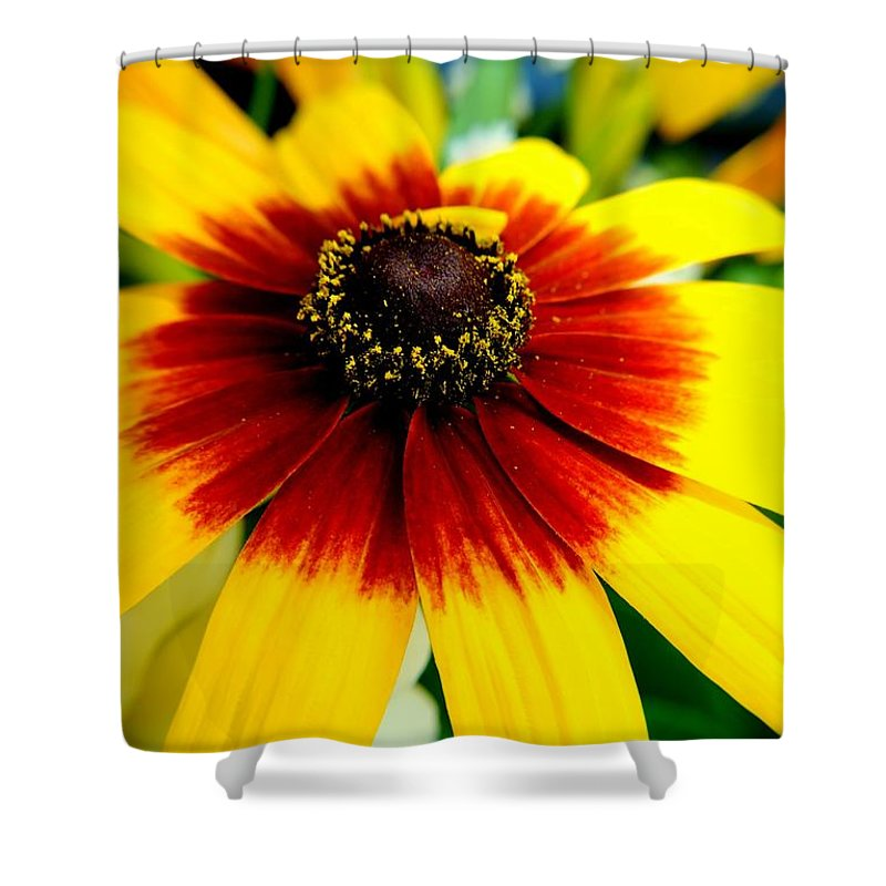 Flowers Shower Curtain featuring the photograph Kaleidoscope Bouquet by Frozen in Time Fine Art Photography